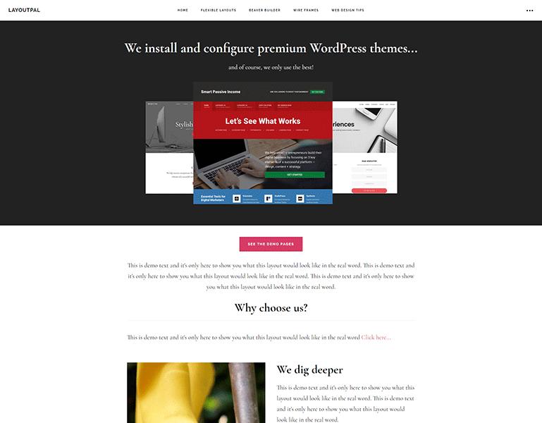 The Web Professional